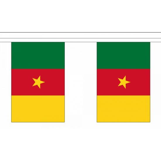 Polyester vlaggenlijn kameroen