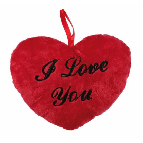 Rood I Love You kussen 18 cm