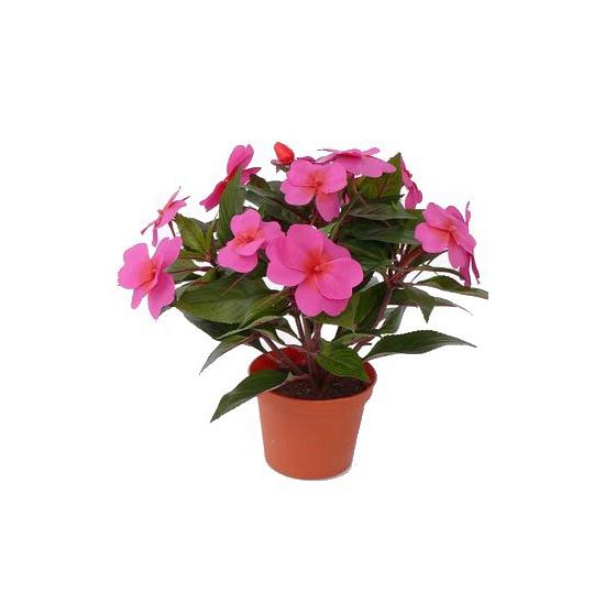 Roze Vlijtig Liesje heester kunstplant 25 cm