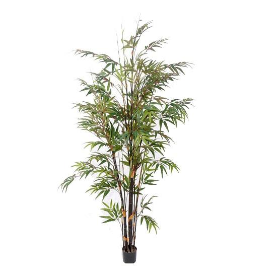 Tropische bamboe boom 190 cm