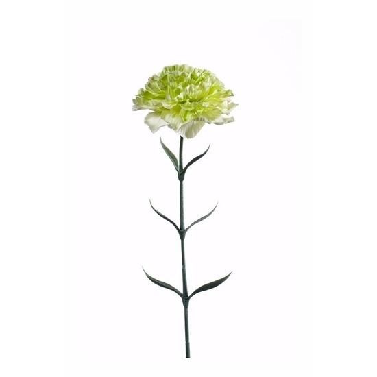 Witgroene Dianthus kunstbloem 65 cm