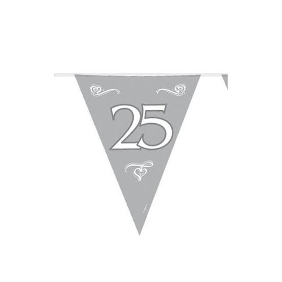 Zilveren vlaggenlijn 25e jubileum
