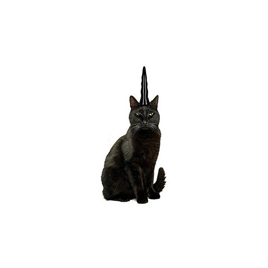 Zwarte eenhoorn hoorn voor katten