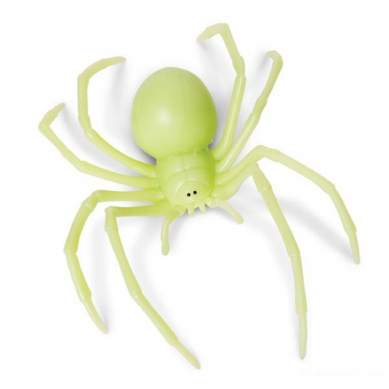 Zwarte Weduwe glow in the dark 18 cm
