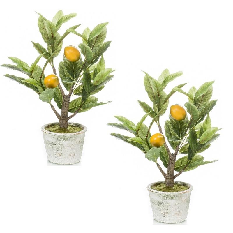 2x Citroenbomen-citrusbomen kunstplanten 45 cm in betonnen plantenpot