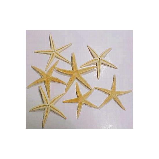 6x stuks Home deco of Maritieme versiering zeesterren van 10 cm