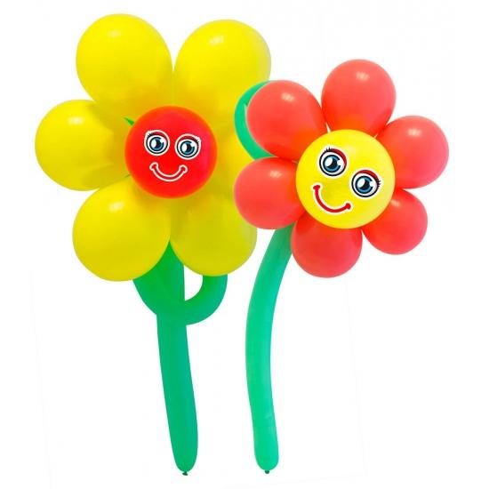 Doe Het Zelf Ballon Figuur Bloemen