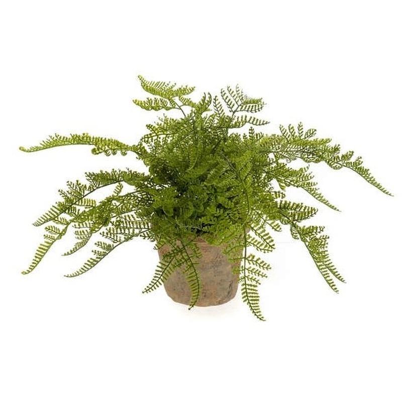 Groene kunstplant varen plant in pot