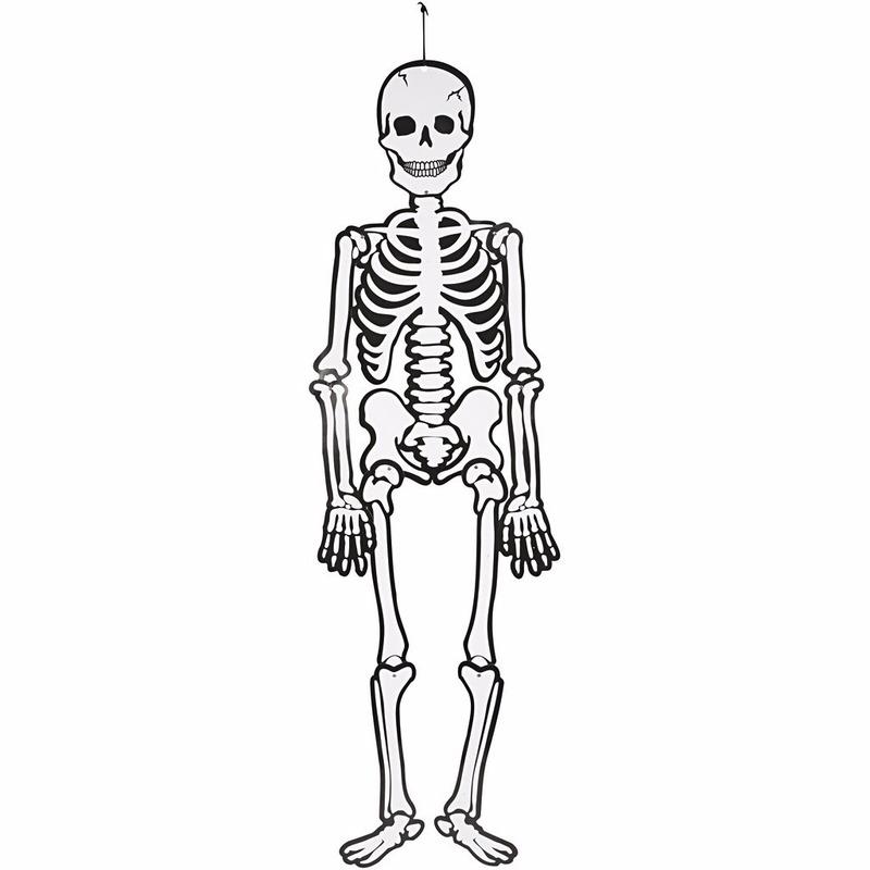 Halloween Hangdecoratie Skelet 120 Cm