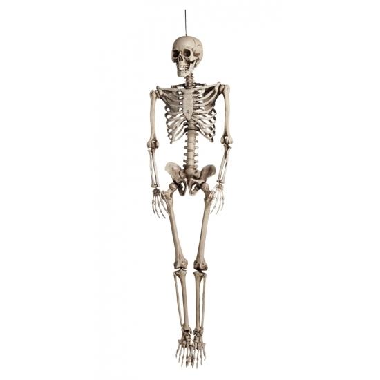 Mega Decoratie Skelet 160 Cm