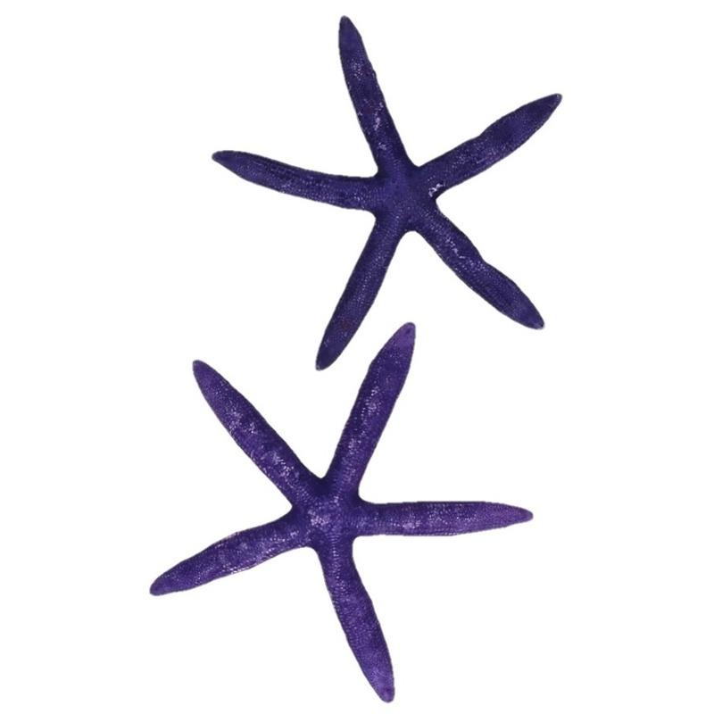 Paarse zeesterren decoratie