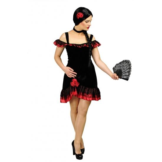 Spaanse flamenco jurk dames met accessoires